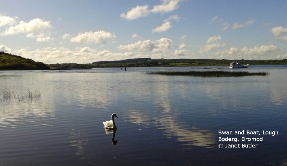 Lough Boderg near Dromod